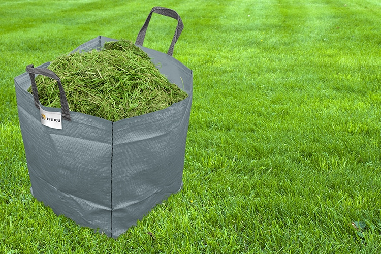 fresh spring green grass, green grass texture